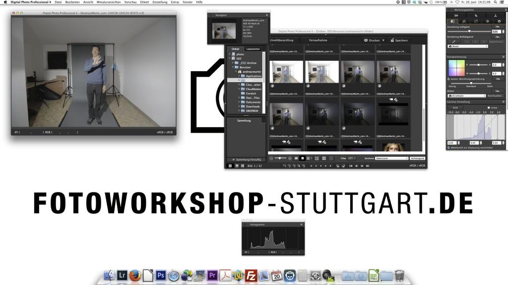 Canon DPP 4.0 Oberfläche individuell konfigurierbar