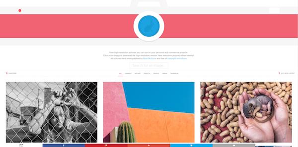 Die 20 Besten Seiten Für Kostenlose Stockfotos Pexels Und Co