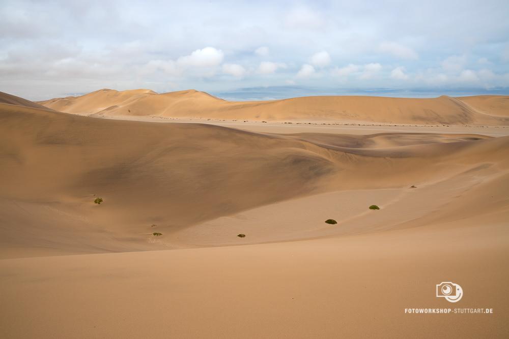 After-Wüste