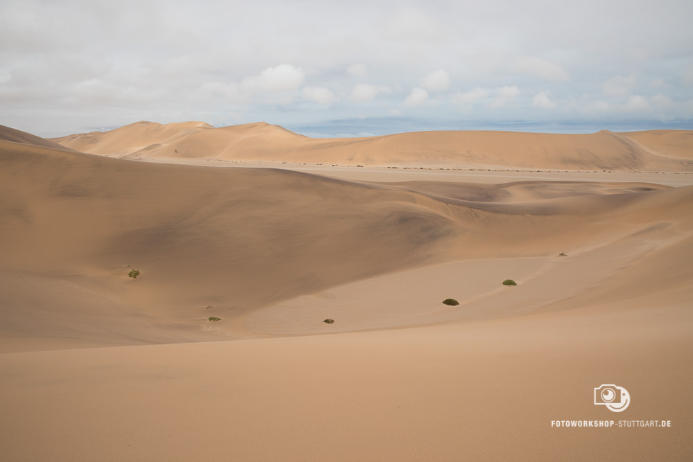 Before-Wüste