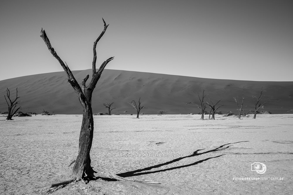 After-Namibia
