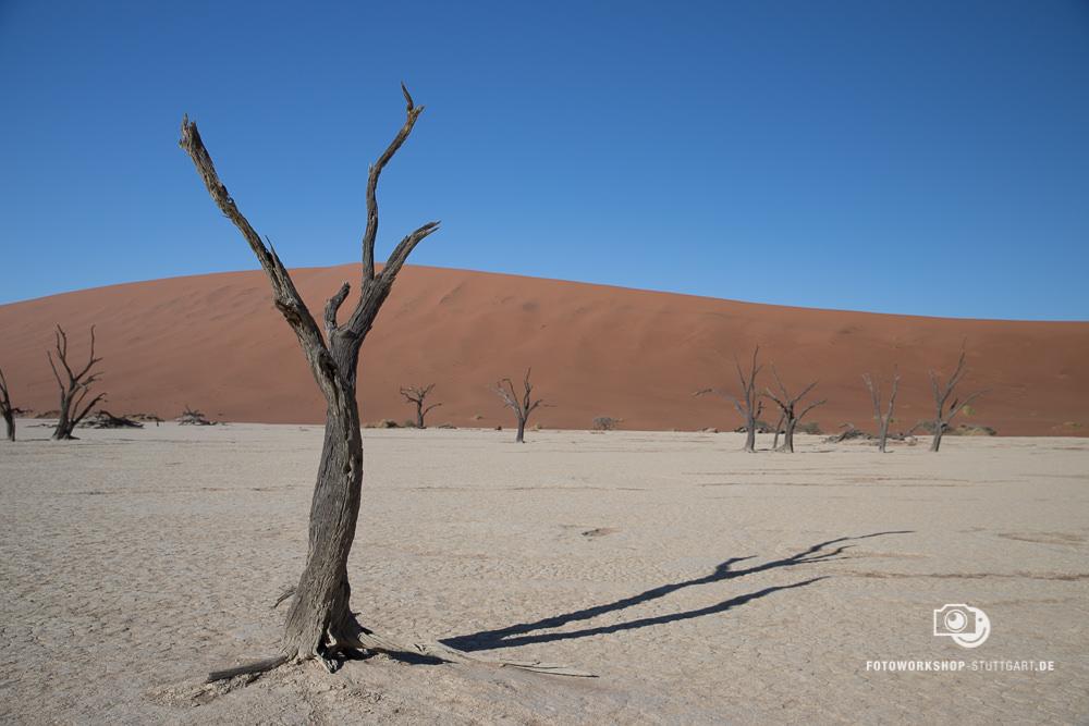 Before-Namibia