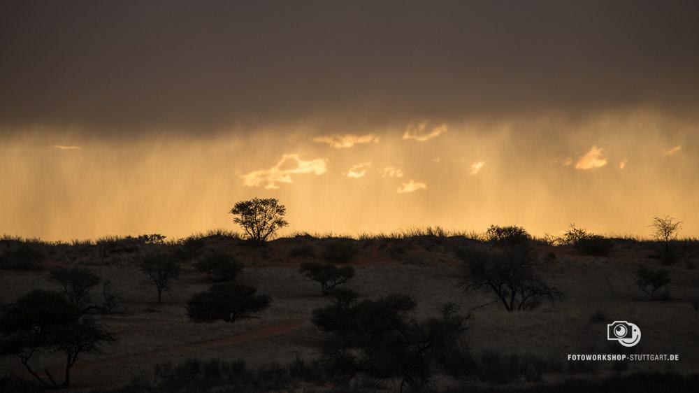 After-Namibia Regen