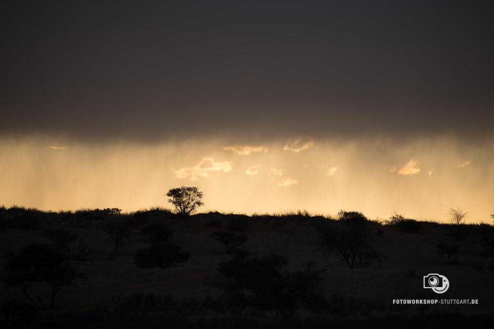 Before-Namibia Regen