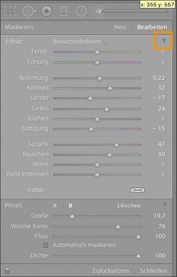 Fotoworkshop-Stuttgart-Lightroom-Pinsel-Korrekturpinsel-Deckkraft-1
