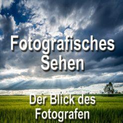 Fotoworkshop-Stuttgart-Fotokurs-800px-fotografisches-sehen-der-blick-des-fotografen-kreative-Bildgestaltung