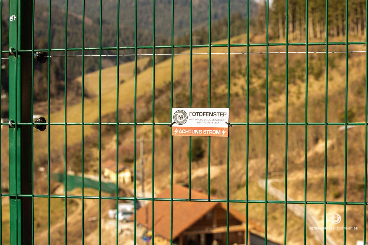 Ausflug-Fotolocation-Schwarzwald-Baer-Wolf-0945-Fotokurs-Fotoworkshop-Fotocoach-Fotocoaching-Stuttgart-Andreas-Martin