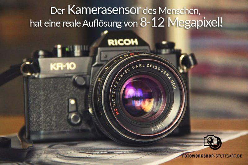 Kamerasensor