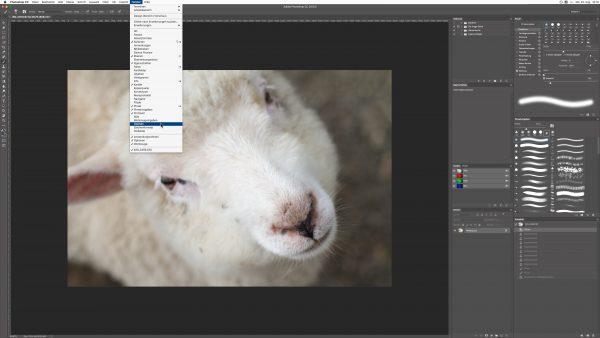 photoshop-zusaetzliche-palette-fenster-einblenden